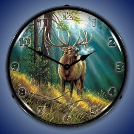 Outdoors Lighted Clocks